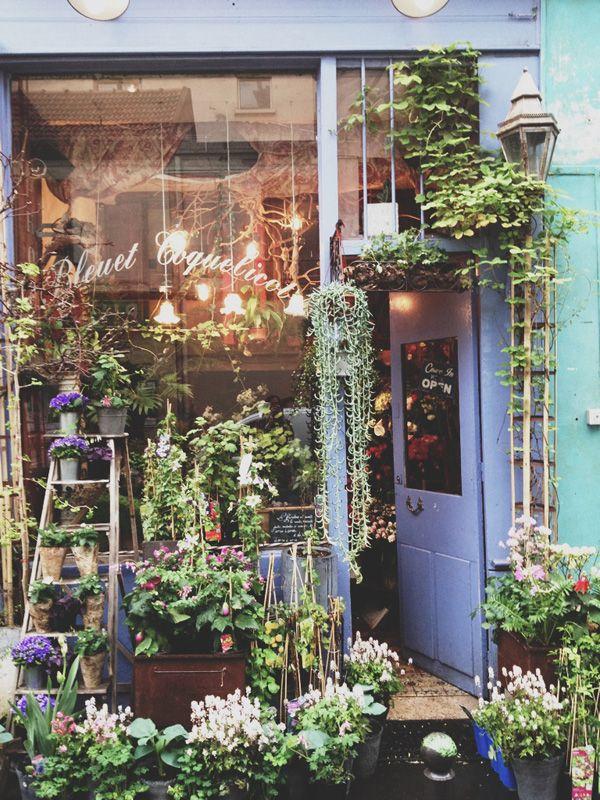 flower shop6