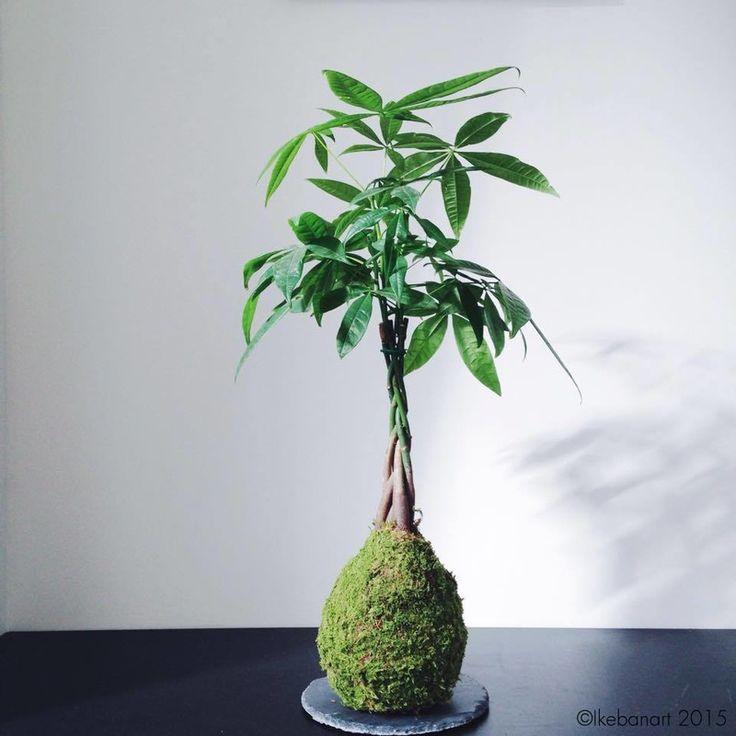 ikebanart2