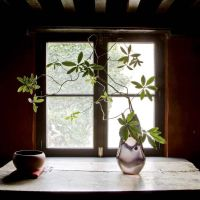 IN A 1567 HOME IN ANTWERP...WABI-SABI & ZEN PHILOSOPHY