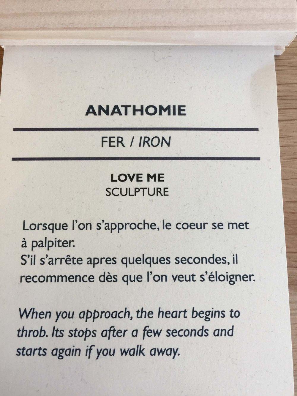 anathomie