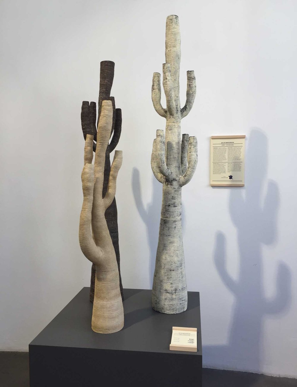 empreintes-cactus