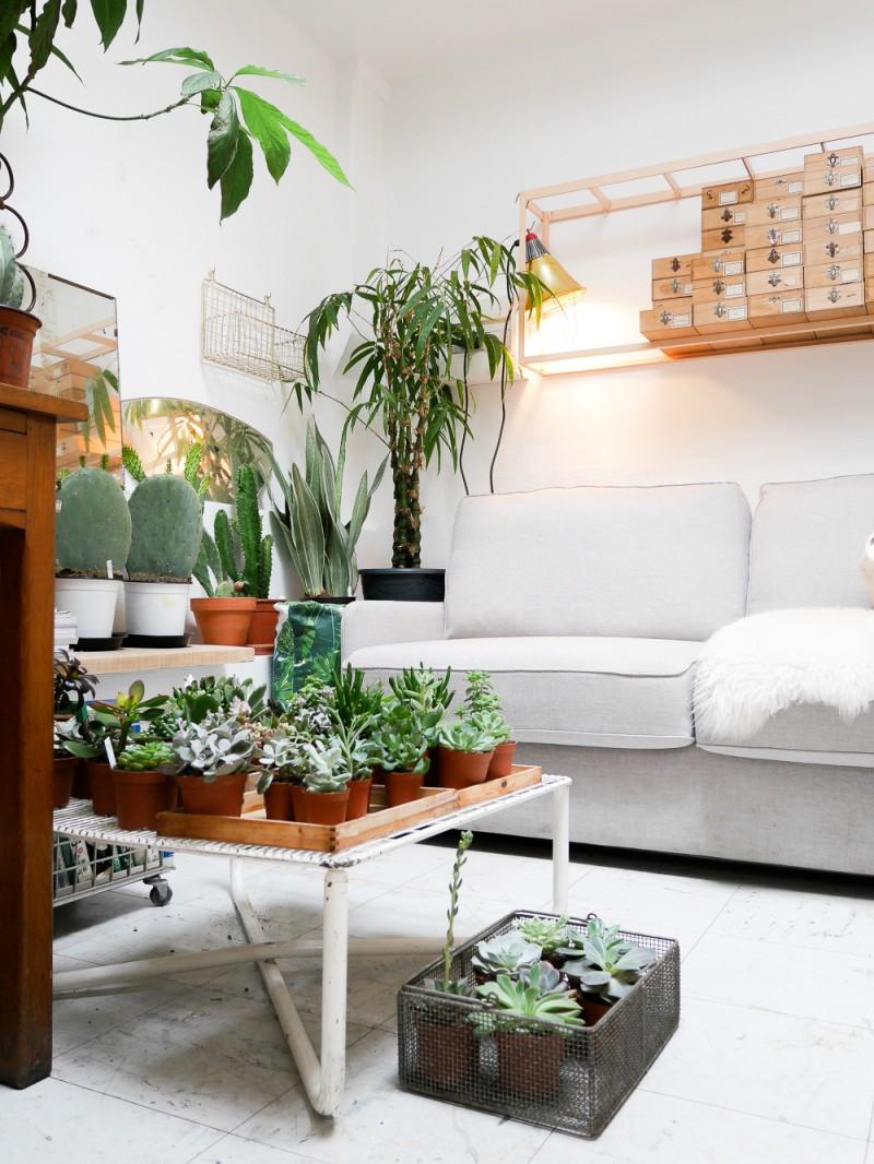 mama petula vegetal concept store paris 2b co by valerie anglade. Black Bedroom Furniture Sets. Home Design Ideas